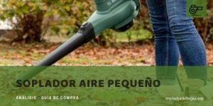 mejores sopladores aire pequeño