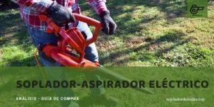 mejores sopladores-aspiradores eléctrico