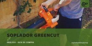 mejores sopladores greencut